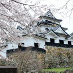 彦根城のアクセスや地図と周辺観光