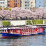 隅田川クルーズや花火に桜の花見など彩色豊かな観光について