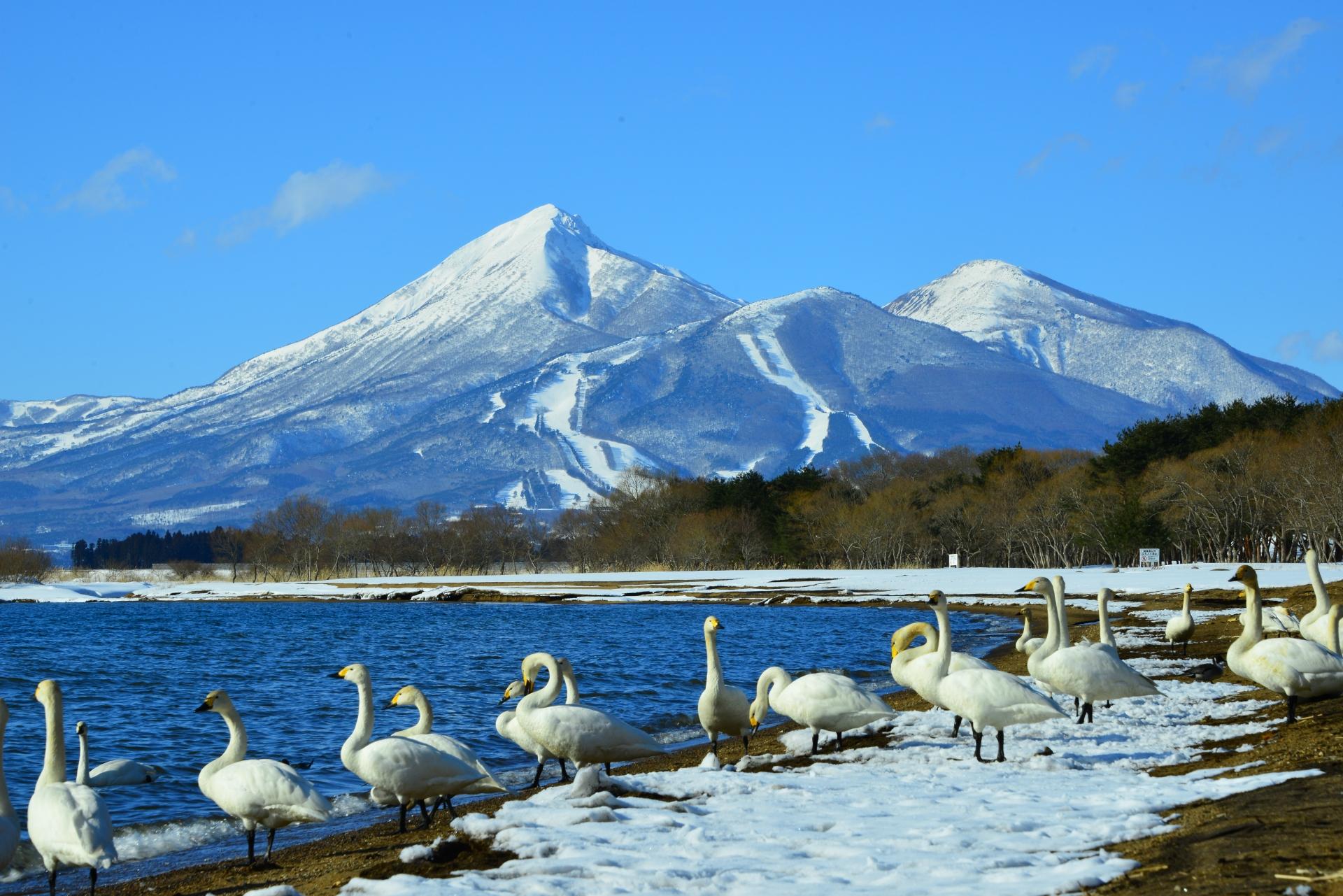 福島の観光スポットとモデルコース