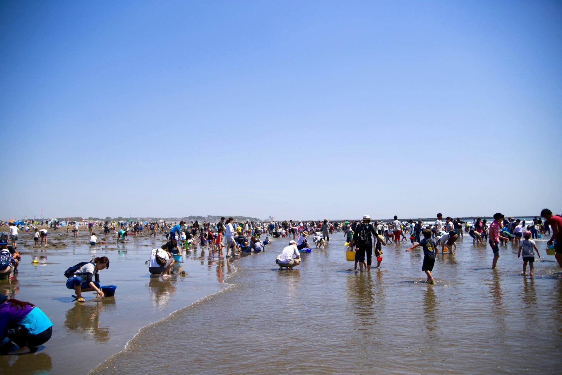 潮干狩りのシーズンや人気スポットについて