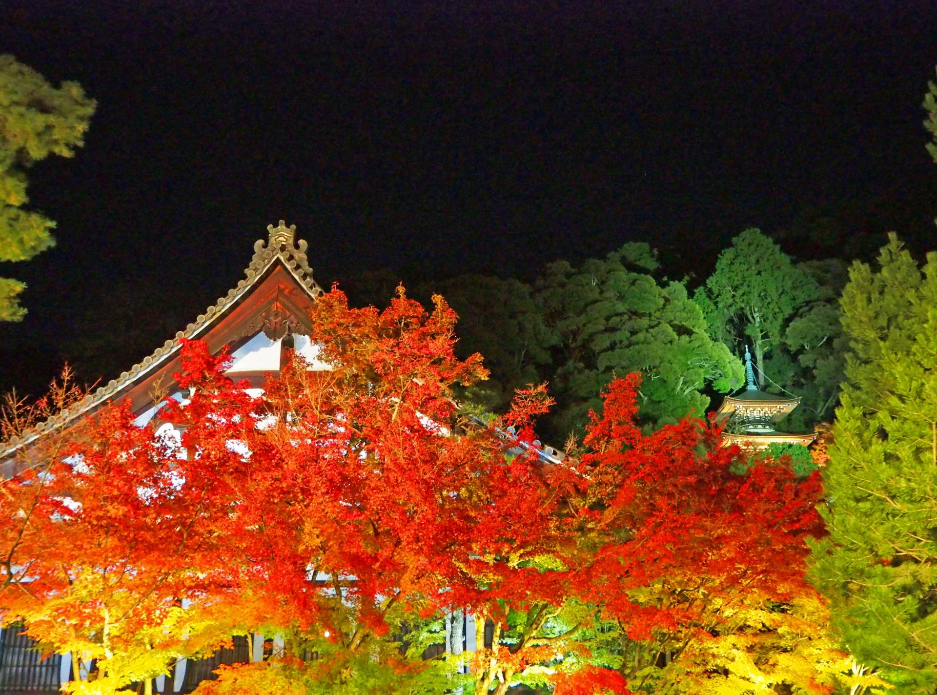 紅葉ランキングで必ず上位にランクインする永観堂禅林寺のライトアップ時期や時間