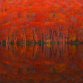 【絶景】蔦沼(つたぬま)の水面に映る紅葉の見頃や周辺の散策マップとアクセス