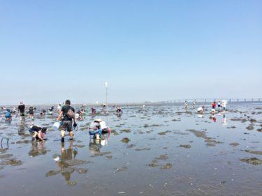 千葉の潮干狩りおすすめスポット